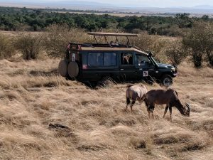Maasai Mara, African Child Foundation, Women travel, Safaris,