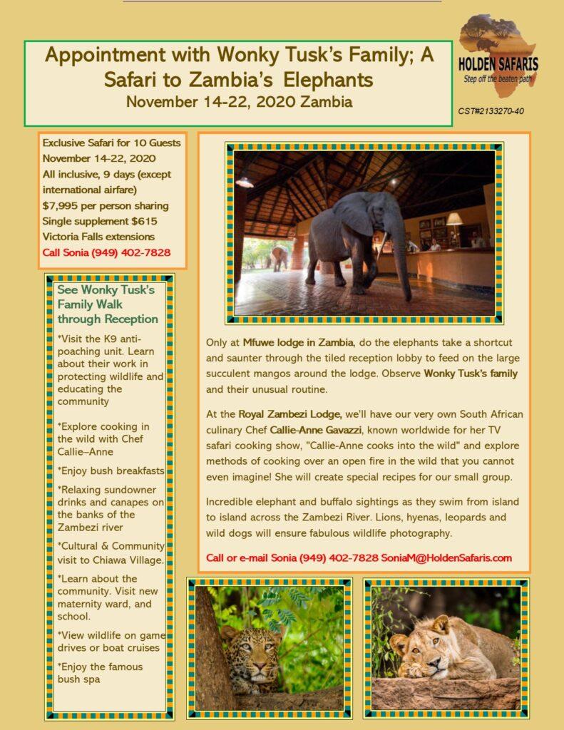 Appointment with Wonky Tusk's Family; A Safari to Zambia's Elephants November 14-22, 2020 Zambia