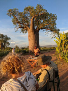 Sundowner next to the Baobab tree